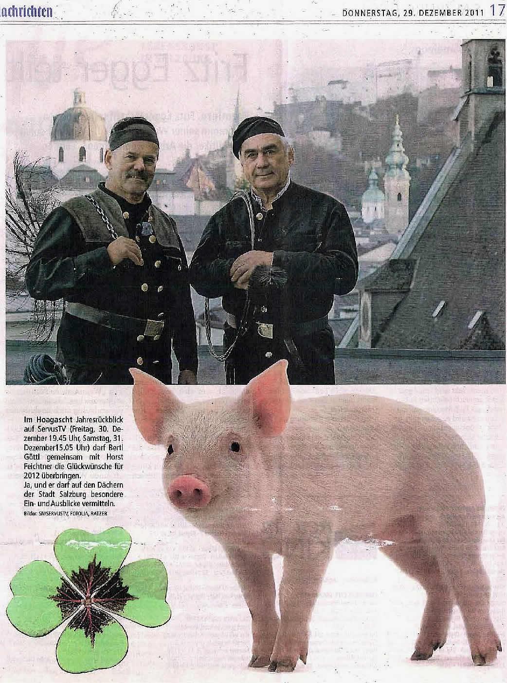 SN Gluecksschwein